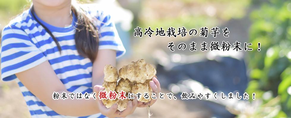 キクイモは食物繊維・ミネラル・ビタミンが豊富です!